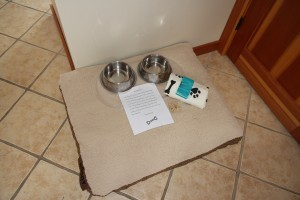 pet-friendly-rooms